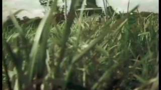 Masport Support Videos (Australia)