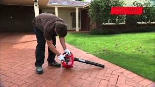 Petrol Blower/Vac